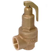 High Lift Safety Valve (Fig 500)