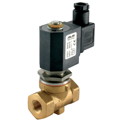 Steam 2/2 Way N/C Steam Pilot Operated Solenoid Valves